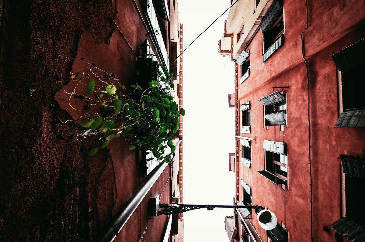davide-ragusa-203822.jpg